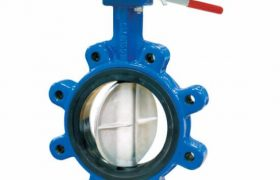 cameron Butterfly valves