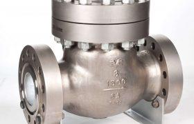 3D Valve Check valve