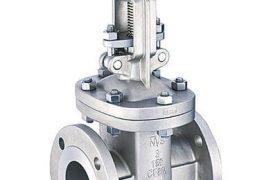 Aloyco Gate valve