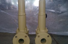 Bellow sealed safety relief valve