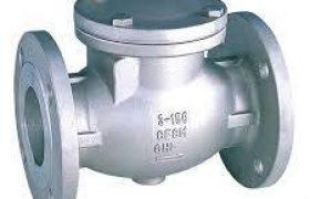 Niton check valve