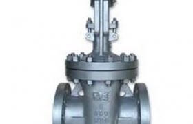3D Valve gate valve