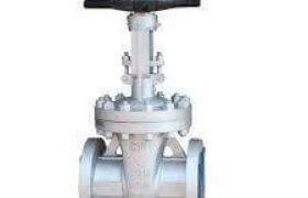 Niton gate valve